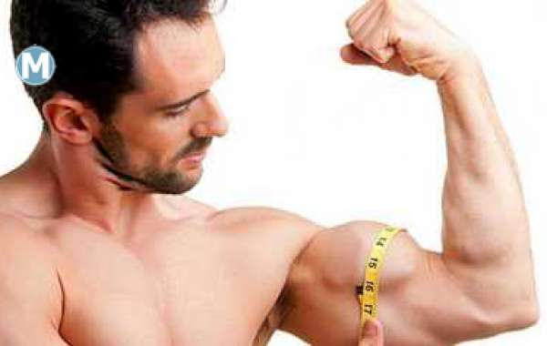 Vital Line of attack For Your Muscle Body Hit